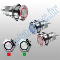 پوش باتن / کلید فلزی ریستی Reset چراغ دار سبز قطر 22mm ضد آب 24 ولت